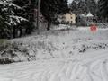 Teren de vanzare in Predeal (zona Partia de Ski). Imagine pentru oferta X310A5 (Fotografia 6).