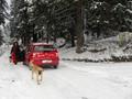 Teren de vanzare in Predeal (zona Partia de Ski). Imagine pentru oferta X310A5 (Fotografia 7).
