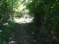 Teren de vanzare in Cornu (zona Cornu de Jos). Imagine pentru oferta X31198 (Fotografia 3).