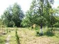 Casa cu 6 camere de vanzare in Cornu (zona Centrala). Imagine pentru oferta X1B87 (Fotografia 7).