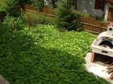 Casa cu 7 camere de vanzare in Predeal (zona Semicentrala). Miniatura #100996 pentru oferta X111F0.