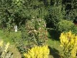 Vila cu 14 camere de vanzare in Comarnic (zona Ghiosesti). Miniatura #102352 pentru oferta X21268.
