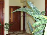 Vila cu 14 camere de vanzare in Comarnic (zona Ghiosesti). Miniatura #102379 pentru oferta X21268.