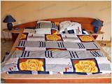 Vila cu 4 camere de vanzare in Azuga (zona Partia de Ski). Miniatura #105545 pentru oferta X21330.