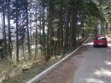 Teren de vanzare in Sinaia (zona Furnica). Miniatura #105969 pentru oferta X31349.