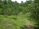 Teren de vanzare in Cornu (zona Cornu de Jos). Miniatura #107056 pentru oferta X3138F.