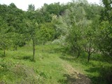 Teren de vanzare in Cornu (zona Cornu de Jos). Miniatura #107055 pentru oferta X3138F.