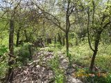 Teren de vanzare in Provita (zona Provita de Sus). Miniatura #109053 pentru oferta X313F0.