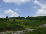 Teren de vanzare in Valea Doftanei (zona Traisteni). Miniatura #109904 pentru oferta X31424.