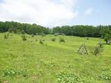 Teren de vanzare in Valea Doftanei (zona Traisteni). Miniatura #109906 pentru oferta X31424.