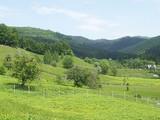 Teren de vanzare in Valea Doftanei (zona Traisteni). Miniatura #109907 pentru oferta X31424.