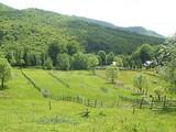Teren de vanzare in Valea Doftanei (zona Traisteni). Miniatura #109908 pentru oferta X31424.