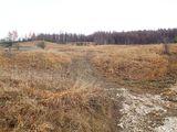Teren de vanzare in Valea Doftanei (zona Traisteni). Miniatura #109912 pentru oferta X31424.