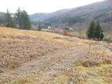Teren de vanzare in Valea Doftanei (zona Traisteni). Miniatura #109916 pentru oferta X31424.