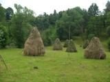 Teren de vanzare in Valea Doftanei (zona Traisteni). Miniatura #111711 pentru oferta X31480.