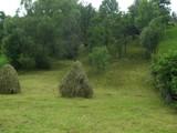 Teren de vanzare in Valea Doftanei (zona Traisteni). Miniatura #111712 pentru oferta X31480.