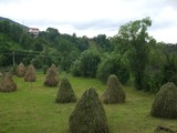 Teren de vanzare in Valea Doftanei (zona Traisteni). Miniatura #111713 pentru oferta X31480.