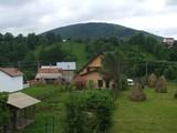 Teren de vanzare in Valea Doftanei (zona Traisteni). Miniatura #111714 pentru oferta X31480.