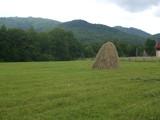 Teren de vanzare in Valea Doftanei (zona Valea Neagra). Miniatura #111716 pentru oferta X31481.