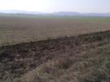 Teren Extravilan de vanzare in Baicoi (zona Floresti). Miniatura #112486 pentru oferta X314B0.