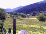 Teren de vanzare in Valea Doftanei (zona Valea Neagra). Miniatura #55945 pentru oferta X3650.