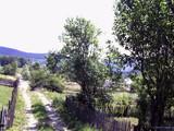 Teren de vanzare in Valea Doftanei (zona Valea Neagra). Miniatura #55947 pentru oferta X3650.