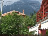 Vila cu 5 camere de vanzare in Busteni (zona Centrala). Miniatura #114764 pentru oferta X21514.