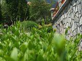 Vila cu 5 camere de vanzare in Busteni (zona Centrala). Miniatura #114807 pentru oferta X21514.