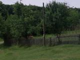 Teren de vanzare in Provita (zona Provita de Jos). Miniatura #114931 pentru oferta X31518.