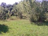 Teren de vanzare in Poiana Campina (zona Semicentrala). Miniatura #115688 pentru oferta X31545.