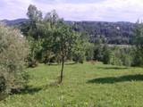Teren de vanzare in Poiana Campina (zona Semicentrala). Miniatura #115689 pentru oferta X31545.