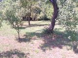 Teren de vanzare in Cornu (zona Cornu de Sus). Miniatura #116077 pentru oferta X31561.