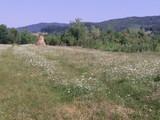 Teren de vanzare in Brebu (zona Pe Camp). Miniatura #116494 pentru oferta X31573.