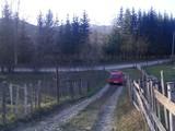 Teren de vanzare in Valea Doftanei (zona Valea Neagra). Miniatura #118619 pentru oferta X315F3.