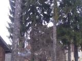 Casa cu 5 camere de vanzare in Predeal (zona Cioplea). Miniatura #119413 pentru oferta X11627.