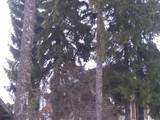 Casa cu 5 camere de vanzare in Predeal (zona Cioplea). Miniatura #119414 pentru oferta X11627.