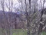 Teren de vanzare in Comarnic (zona Ghiosesti). Miniatura #120383 pentru oferta X31673.