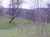 Teren de vanzare in Comarnic (zona Ghiosesti). Miniatura #120387 pentru oferta X31673.
