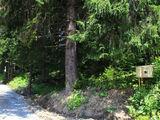 Teren de vanzare in Predeal (zona Partia de Ski). Miniatura #127652 pentru oferta X31739.