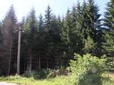 Teren de vanzare in Azuga (zona Partia de Ski). Miniatura #123014 pentru oferta X31738.