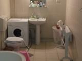 Casa cu 5 camere de vanzare in Campina (zona Semicentrala). Miniatura #123059 pentru oferta X11745.
