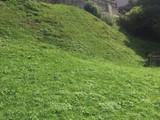 Teren de vanzare in Busteni (zona Zamora). Miniatura #125036 pentru oferta X317FB.