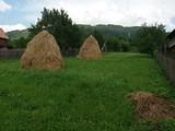 Teren de vanzare in Valea Doftanei (zona Traisteni). Miniatura #129788 pentru oferta X31830.