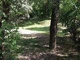 Teren de vanzare in Comarnic (zona Podul Vartos). Miniatura #129864 pentru oferta X319AA.