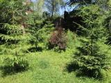 Vila cu 6 camere de vanzare in Sinaia. Miniatura #130767 pentru oferta X219E9.