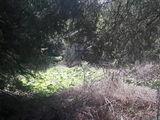 Teren de vanzare in Busteni (zona Zamora). Miniatura #132603 pentru oferta X31A8C.