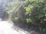 Teren de vanzare in Busteni (zona Zamora). Miniatura #132599 pentru oferta X31A8C.