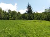 Casa cu 2 camere de vanzare in Provita (zona Provita de Sus). Miniatura #132944 pentru oferta X11580.