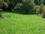 Teren de vanzare in Valea Doftanei (zona Tesila). Miniatura #133120 pentru oferta X31A21.