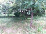 Casa cu 3 camere de vanzare in Campina (zona Muscel). Miniatura #133277 pentru oferta X11AC5.